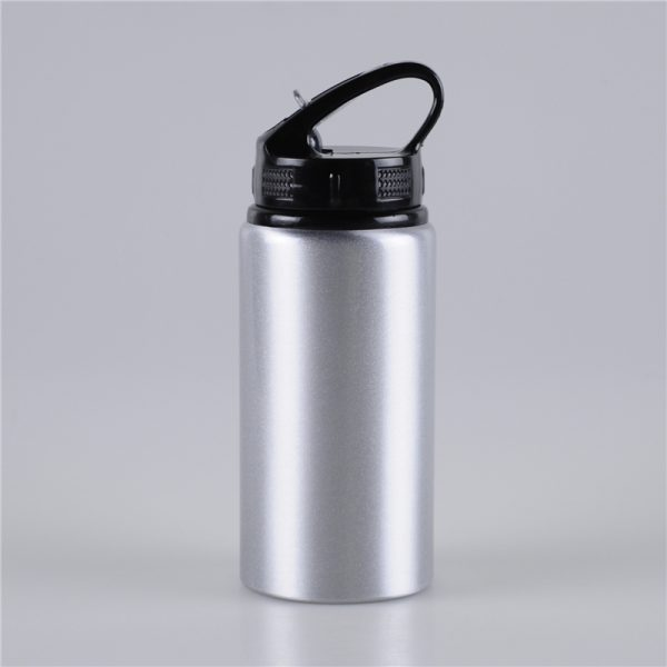 500ml-easy-taking-metal-drink-bottle (1)