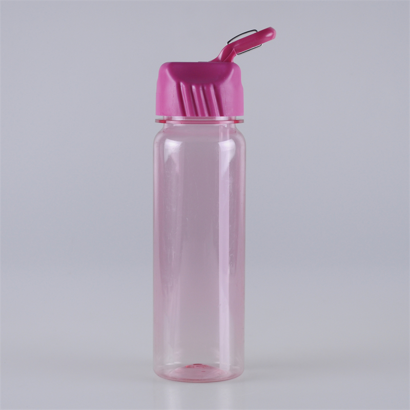 650ml-carabiner-design-straw-lid-bpa-free-tritan-bottle (1)