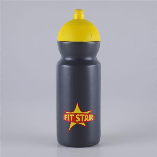 650ml-push-pull-lid-fitness-water-bottle (1)