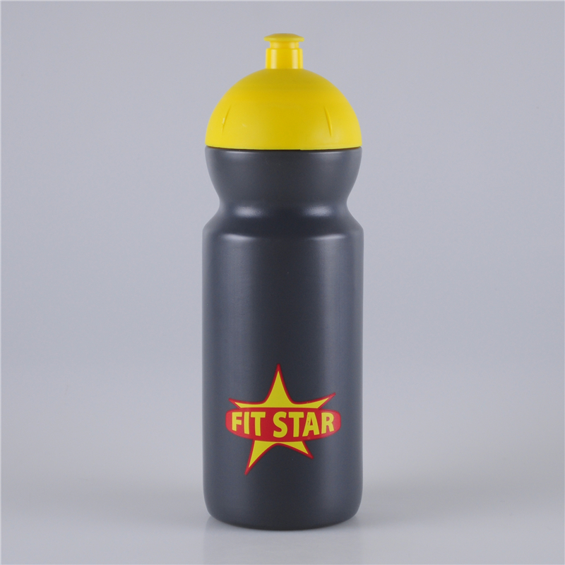 650ml-push-pull-lid-fitness-water-bottle (1)